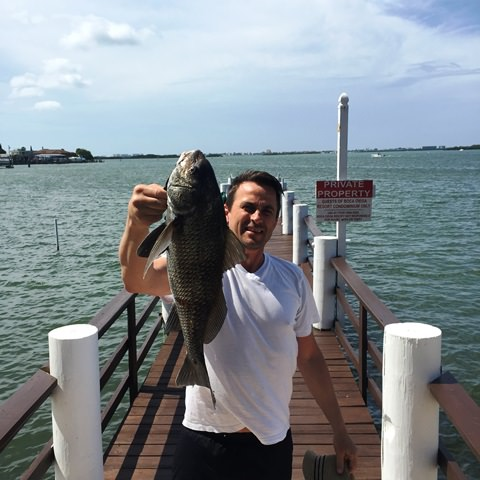 On of our renters cought this Blackdrum last week on Boca fishing pier.